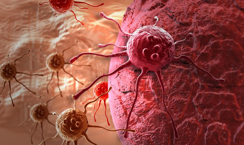 7 პროდუქტი, რომლებიც კიბოს უჯრედებს აქრობს